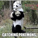 stolen panda | ME CATCHING POKEMONS | image tagged in stolen panda | made w/ Imgflip meme maker