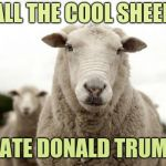 . . . and for no intelligent reason | ALL THE COOL SHEEP HATE DONALD TRUMP | image tagged in sheep,haters gonna hate,mckayla maroney not impressed | made w/ Imgflip meme maker