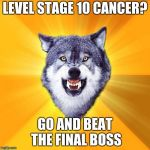Courage Wolf Meme | LEVEL STAGE 10 CANCER? GO AND BEAT THE FINAL BOSS | image tagged in memes,courage wolf | made w/ Imgflip meme maker