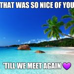 tropical island birthday | THAT WAS SO NICE OF YOU 'TILL WE MEET AGAIN  | image tagged in tropical island birthday | made w/ Imgflip meme maker