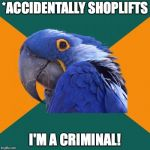 Paranoid Parrot Meme | *ACCIDENTALLY SHOPLIFTS I'M A CRIMINAL! | image tagged in memes,paranoid parrot | made w/ Imgflip meme maker