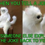 Persian Cat Room Guardian Meme | WHEN YOU TELL A JOKE AND SOMEONE ELSE EXPLAINS THE JOKE BACK TO YOU | image tagged in memes,persian cat room guardian | made w/ Imgflip meme maker