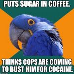 Cocaine Coffee | PUTS SUGAR IN COFFEE. THINKS COPS ARE COMING TO BUST HIM FOR COCAINE. | image tagged in memes,paranoid parrot,cocaine,coffee addict,sugar,cops | made w/ Imgflip meme maker