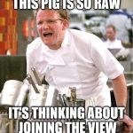 Chef Gordon Ramsay Meme | THIS PIG IS SO RAW IT'S THINKING ABOUT JOINING THE VIEW | image tagged in memes,chef gordon ramsay,the view | made w/ Imgflip meme maker