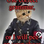 He'll do it, too! | Use correct grammar, or I will pee on your shoes. | image tagged in grammar nazi cat,funny,memes | made w/ Imgflip meme maker
