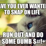 First World Problems Cat Meme | HAVE YOU EVER WANTED TO SNAP ON LIFE RUN OUT AND DO SOME DUMB $#!+ | image tagged in memes,first world problems cat | made w/ Imgflip meme maker