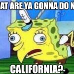 Mocking Spongebob Meme | WHAT ARE YA GONNA DO NEXT CALIFORNIA? | image tagged in memes,mocking spongebob | made w/ Imgflip meme maker