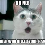 OMG Cat Meme | OH NO! I WONDER WHO KILLED YOUR HAMSTER | image tagged in memes,omg cat | made w/ Imgflip meme maker