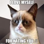 I've broken free from the dumb things that you do ♪ | I LOVE MYSELF FOR HATING YOU ♬ | image tagged in musically malicious grumpy cat,grumpy cat,memes,music,i hate myself for loving you,joan jett | made w/ Imgflip meme maker
