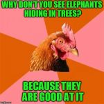 Anti Joke Chicken Meme | WHY DON'T YOU SEE ELEPHANTS HIDING IN TREES? BECAUSE THEY ARE GOOD AT IT | image tagged in memes,anti joke chicken | made w/ Imgflip meme maker