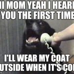 Hello This Is Dog Meme Generator Imgflip