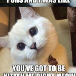 I don't know if this joke was purrfect | WHEN I RAN OUT OF PUNS AND I WAS LIKE YOU'VE GOT TO BE KITTEN ME RIGHT MEOW | image tagged in bad pun cat | made w/ Imgflip meme maker