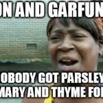 Aint Nobody Got Time For That Meme | SIMON AND GARFUNKEL? AIN'T NOBODY GOT PARSLEY, SAGE, ROSEMARY AND THYME FOR THAT | image tagged in memes,aint nobody got time for that,simon and garfunkel | made w/ Imgflip meme maker