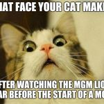Scared Cat Meme | THAT FACE YOUR CAT MAKES AFTER WATCHING THE MGM LION ROAR BEFORE THE START OF A MOVIE | image tagged in memes,scared cat | made w/ Imgflip meme maker