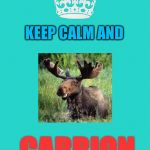 Keep calm and carry on | KEEP CALM AND CARRION | image tagged in memes,keep calm and carry on aqua | made w/ Imgflip meme maker