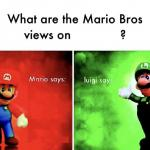 What are the mario bros views on:      ? meme