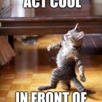 Cool Cat Stroll Meme | TRYING TO ACT COOL IN FRONT OF THE COOL KIDS | image tagged in memes,cool cat stroll | made w/ Imgflip meme maker
