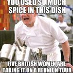 Chef Gordon Ramsay Meme | YOU USED SO MUCH SPICE IN THIS DISH FIVE BRITISH WOMEN ARE TAKING IT ON A REUNION TOUR | image tagged in memes,chef gordon ramsay | made w/ Imgflip meme maker