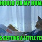 I Should Buy A Boat Cat Meme | I SHOULD FIX MY HUMAN HE'S GETTING A LITTLE TESTY | image tagged in memes,i should buy a boat cat | made w/ Imgflip meme maker