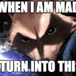 Rocket Raccoon Meme | WHEN I AM MAD I TURN INTO THIS | image tagged in memes,rocket raccoon | made w/ Imgflip meme maker