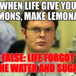 When Life Gives You Lemons.. Dwight Schrute will Interfere  | WHEN LIFE GIVE YOU LEMONS, MAKE LEMONADE FALSE: LIFE FORGOT THE WATER AND SUGAR | image tagged in memes,dwight schrute | made w/ Imgflip meme maker