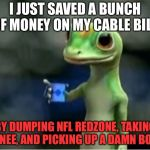 Take a knee on NFL RedZone and read | I JUST SAVED A BUNCH OF MONEY ON MY CABLE BILL, BY DUMPING NFL REDZONE, TAKING A KNEE, AND PICKING UP A DAMN BOOK. | image tagged in geico gecko,memes,taking a knee,nfl,books,tv | made w/ Imgflip meme maker