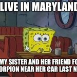 How's your weekend going? | I LIVE IN MARYLAND AND MY SISTER AND HER FRIEND FOUND A SCORPION NEAR HER CAR LAST NIGHT | image tagged in spongebob coffee | made w/ Imgflip meme maker