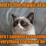 What keeps you up at night... | My bed is the magical place where I suddenly remember everything I forgot to do | image tagged in memes,grumpy cat bed,grumpy cat | made w/ Imgflip meme maker