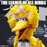 Big Bird Meme | THE LEADER OF ALL BIRBS | image tagged in memes,big bird | made w/ Imgflip meme maker