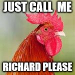 rooster | JUST CALL  ME RICHARD PLEASE | image tagged in rooster | made w/ Imgflip meme maker