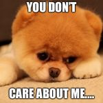 Sad puppy | YOU DON'T CARE ABOUT ME.… | image tagged in sad puppy | made w/ Imgflip meme maker
