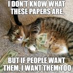 money cat | I DON'T KNOW WHAT THESE PAPERS ARE, BUT IF PEOPLE WANT THEM, I WANT THEM TOO | image tagged in money cat | made w/ Imgflip meme maker