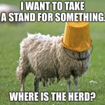 Blind sheep | I WANT TO TAKE A STAND FOR SOMETHING. WHERE IS THE HERD? | image tagged in stupid sheep,memes,follow,blind,crowd,trends | made w/ Imgflip meme maker