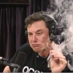 Elon Musk smoking a joint meme