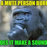 Question of the day | IF A MUTE PERSON BURPS DOES IT MAKE A SOUND? | image tagged in that is the question,memes,funny,burp | made w/ Imgflip meme maker