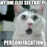 OMG Cat Meme | DID ANY ONE ELSE SEE THAT PLANE? PERSONIFACATION | image tagged in memes,omg cat | made w/ Imgflip meme maker