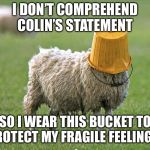 stupid sheep | I DON'T COMPREHEND COLIN'S STATEMENT SO I WEAR THIS BUCKET TO PROTECT MY FRAGILE FEELINGS. | image tagged in stupid sheep | made w/ Imgflip meme maker