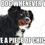 Crazy Dawg Meme | MY DOG WHENEVER YOU HAVE A PIECE OF CHICKEN | image tagged in memes,crazy dawg | made w/ Imgflip meme maker
