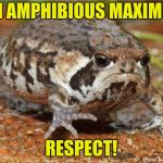 Grumpy Toad Meme | I'M AMPHIBIOUS MAXIMUS RESPECT! | image tagged in memes,grumpy toad | made w/ Imgflip meme maker