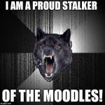Insanity Wolf Meme | I AM A PROUD STALKER OF THE MOODLES! | image tagged in memes,insanity wolf | made w/ Imgflip meme maker
