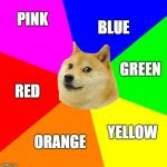 Advice Doge Meme | PINK BLUE YELLOW GREEN ORANGE RED | image tagged in memes,advice doge | made w/ Imgflip meme maker