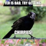 Bad Pun Crow | IF YOU THINK BIRD FLU IS BAD, TRY GETTING CHIRPIES! | image tagged in bad pun crow,bad puns,crow,birds | made w/ Imgflip meme maker