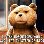 TED Meme | I WISH MOSQUITOES WOULD SUCK FAT IN STEAD OF BLOOD | image tagged in memes,ted | made w/ Imgflip meme maker