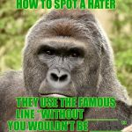 "Har | HOW TO SPOT A HATER THEY USE THE FAMOUS LINE ""WITHOUT _____ YOU WOULDN'T BE _____"" 