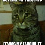 What do you mean?  | HOW CAN YOU NOT LIKE MY PRESENT? IT WAS MY FAVOURITE ANIMAL CARCASS... | image tagged in memes,depressed cat | made w/ Imgflip meme maker