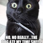 Woah Kitty Meme | NO, NO REALLY...THE DOG ATE MY TIME SHEET! | image tagged in memes,woah kitty | made w/ Imgflip meme maker