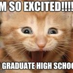 Excited Cat Meme | I'M SO EXCITED!!!!!! TO GRADUATE HIGH SCHOOL! | image tagged in memes,excited cat | made w/ Imgflip meme maker