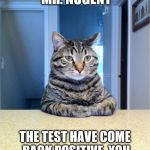 Take A Seat Cat Meme | TAKE A SEAT MR. NUGENT THE TEST HAVE COME BACK POSITIVE. YOU HAVE CAT SCRATCH FEVER. | image tagged in memes,take a seat cat,ted nugent | made w/ Imgflip meme maker