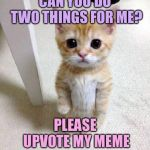 Cute Cat Meme | CAN YOU DO TWO THINGS FOR ME? PLEASE UPVOTE MY MEME AND IMPEACH TRUMP | image tagged in memes,cute cat | made w/ Imgflip meme maker