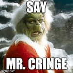 grinch | SAY MR. CRINGE | image tagged in grinch | made w/ Imgflip meme maker